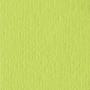 Бумага для скрапбукинга с текстурой апельсин, 30,5х30,5 см, пастельный зеленый